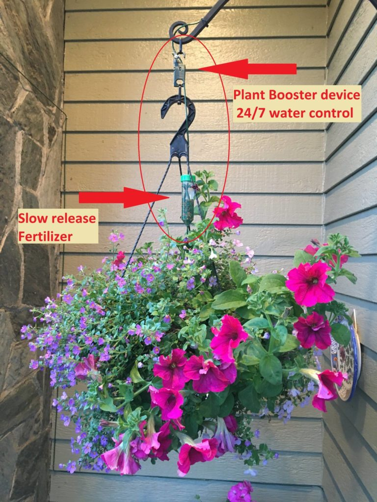 Hanging Basket installation using Plant Booster