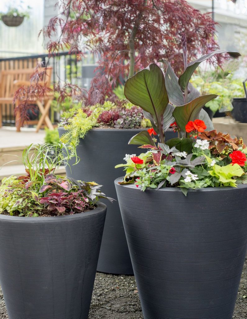 Ideas for container gardening plant booster - Self watering container gardening system ...