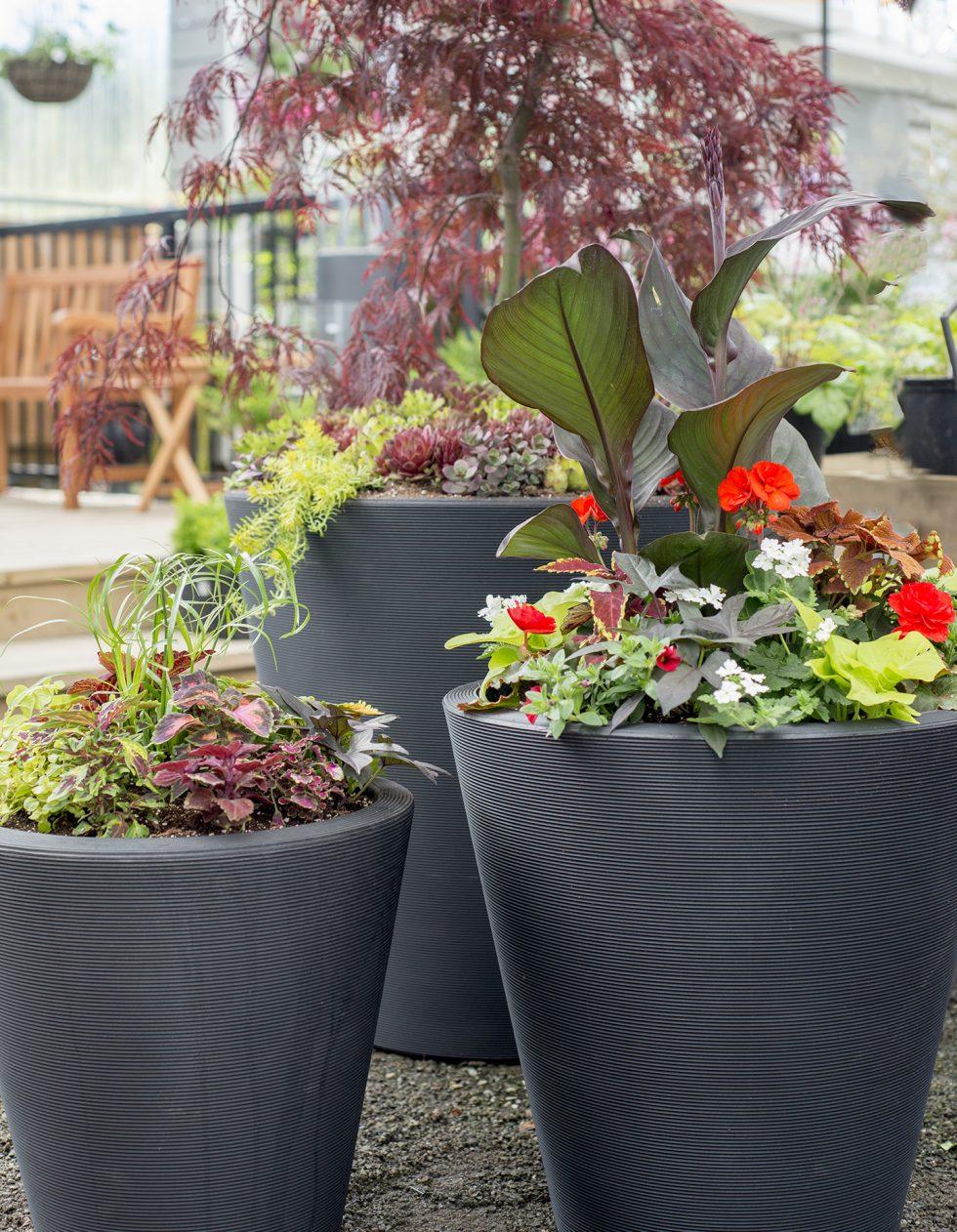 container gardening ideas for inspiration - Garden Ideas Pots