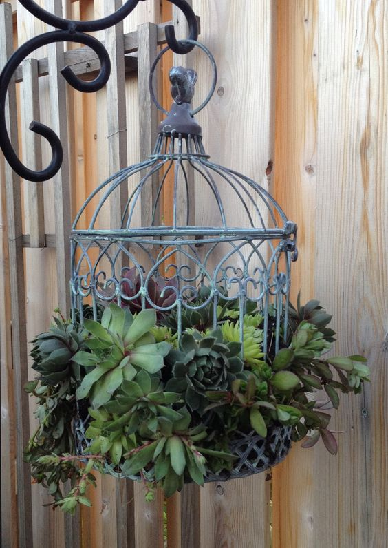 Lovely From Topping Up A Hanging Birdbath To Watering A Planter In A Repurposed  Birdcage, The Ideas Are Endless.