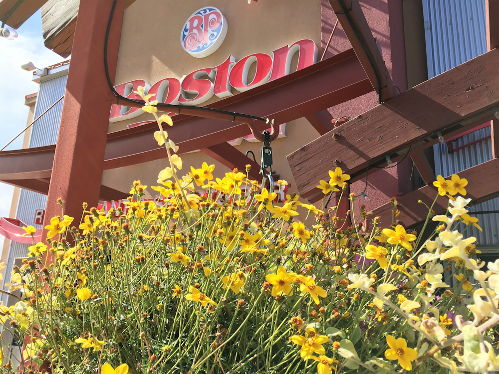 Boston Pizza Mission